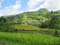 http://www.aseppetir1.com/2015/05/trip-to-beautiful-tea-plantation-and-waterfall.html