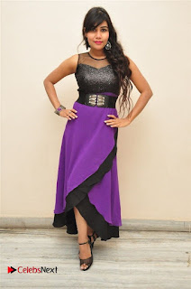Telugu Actress Rachana Smith Stills at Money is Honey Audio Release  0078.jpg