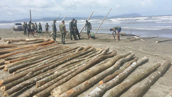 Con palos piedras y excavadoras el régimen planea defenderse de una invasión armada
