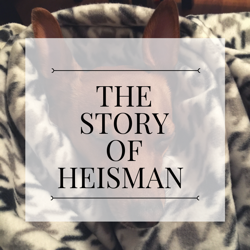 The Story of Heisman