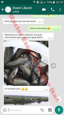 Master Essen Ikan Nila Babon