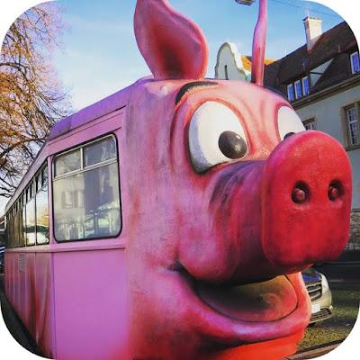 Christmas in Stuttgart: Schweine Museum (Pig Museum)