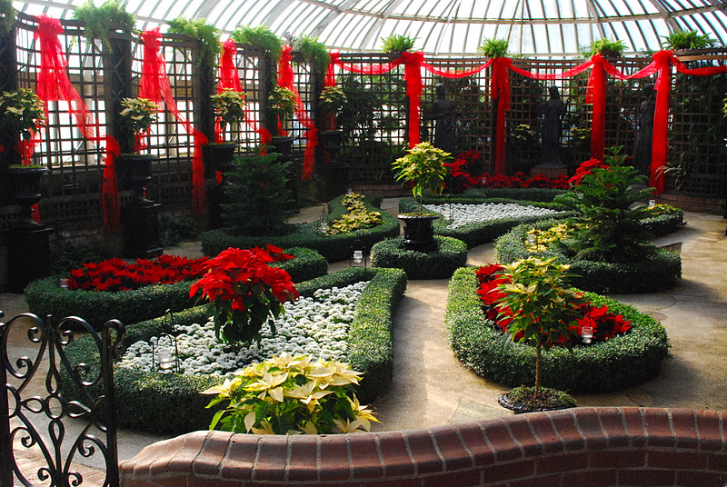 Phipps Conservatory Christmas 2019.Wife Mother Gardener Phipps Conservatory S Christmas