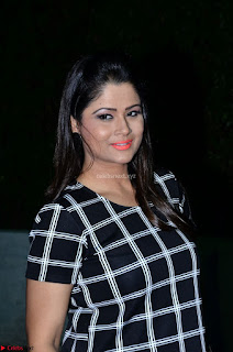 Shilpa Chakravarthy in Dark blue short tight dress At Srivalli Movie Pre Release Event ~ Exclusive Celebrities Galleries 075