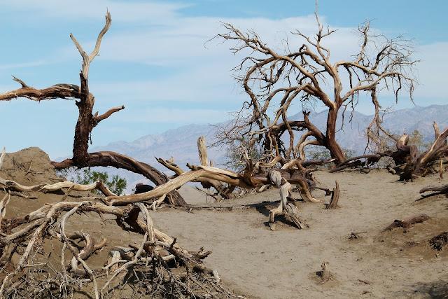 Death Valley, USA - RictasBlog