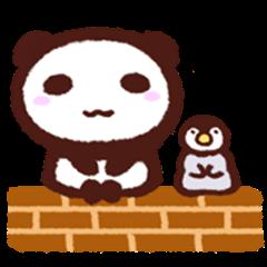 Panda and Penguin4