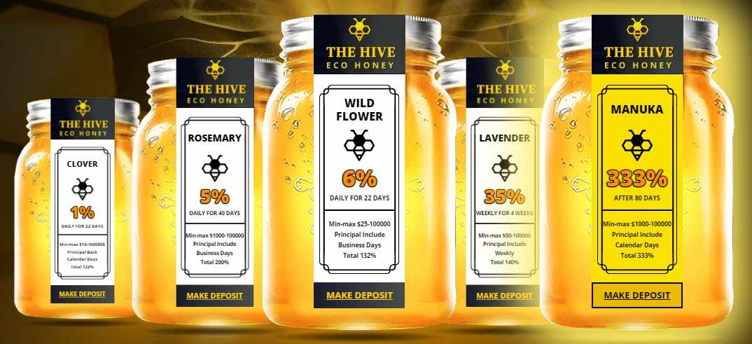 Инвестиционные планы Eco Hive