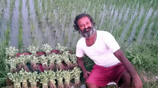 This Scientist has left America's job, doing farming in his village
