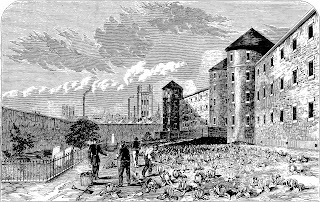 A black and white line drawing showing a Victorian prison building with men labouring outside in a vegetable garden. The garden is bounded by a high wall against which is an area sectioned off by an iron fence. There are buildings - a factory chimney and church tower - in the distance beyond the wall.