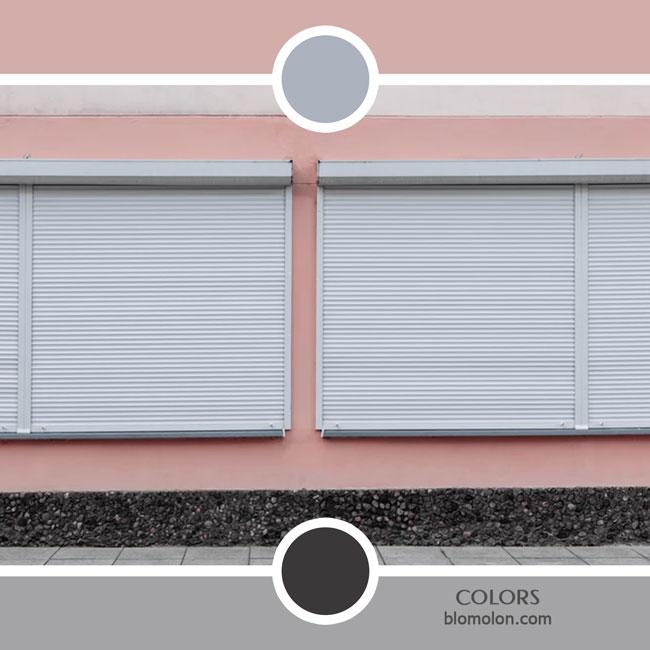 variedad_en_color_color_48