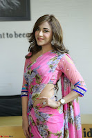 Angela Krislinzki Rogue Movie Fame Telugu Actress in Saree Backless Choli 098.JPG