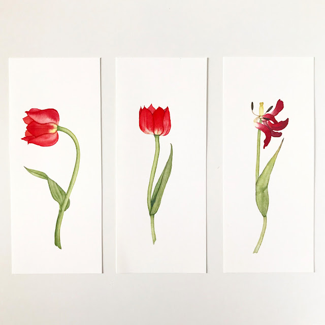 watercolor, botanical watercolor, floral watercolor, watercolor flowers, watercolor tulips, tulips, tulip painting, triptych, Anne Butera, My Giant Strawberry