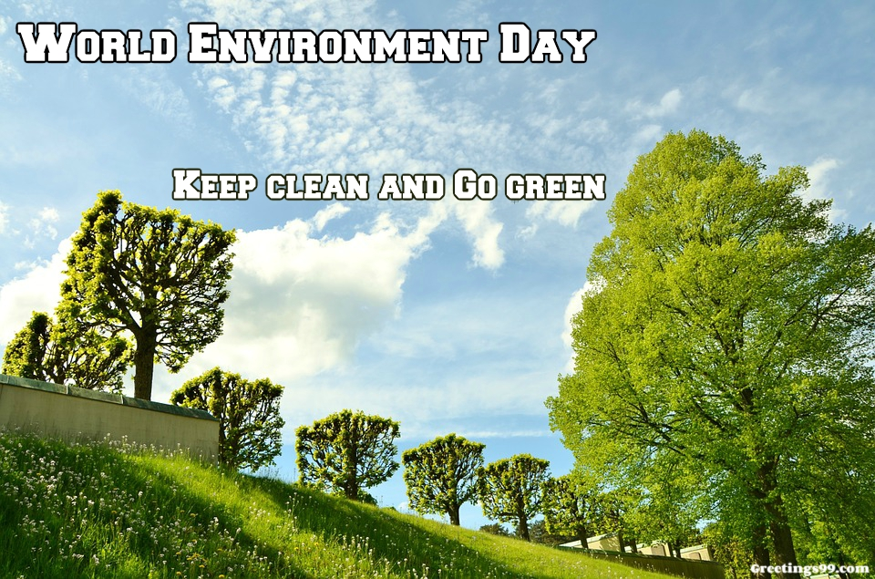 World Environment Day 2018 Theme | Slogans | Posters