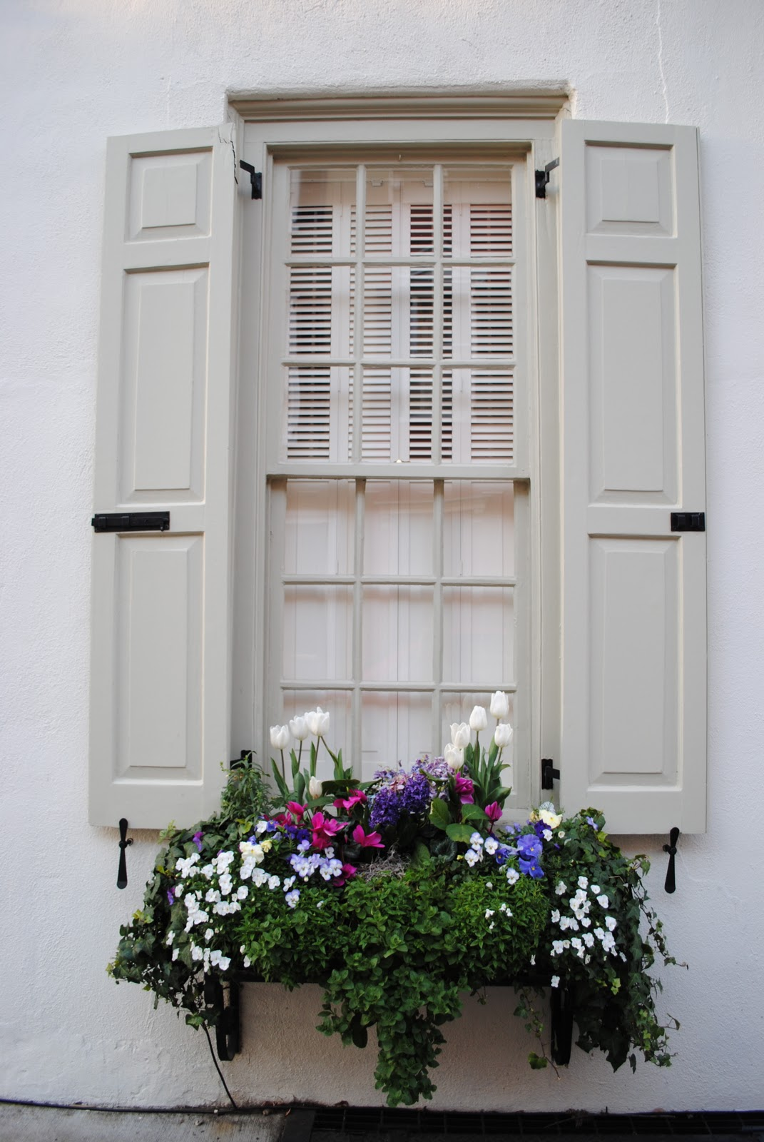 G And M Charleston Window Boxes