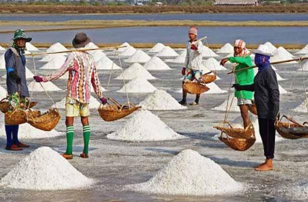 Garam Impor Masuk Ke Jabar, Petani Menjerit Panen 1.000 Ton Garam tak Terjual