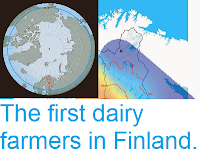 http://sciencythoughts.blogspot.co.uk/2014/08/the-first-dairy-farmers-in-finland.html