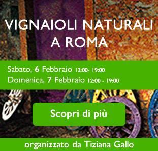 http://www.vininaturaliaroma.com/