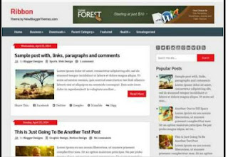 Simple design responsive blog template