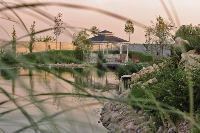 Gradina cu lac, iaz cu peste, lac artificial, constructie lac, design gradina lac.