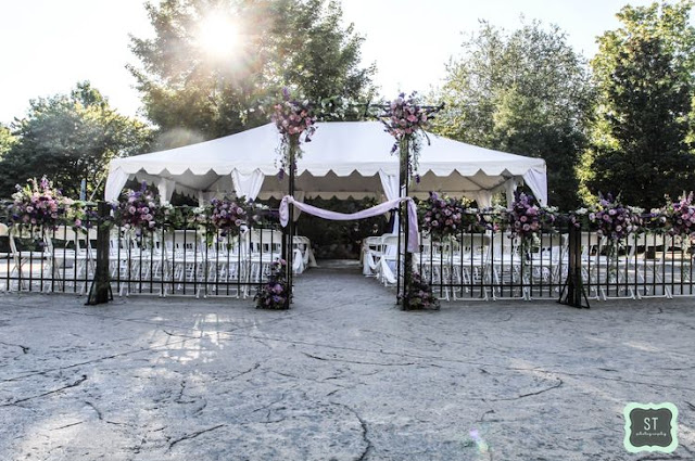Wedding Venues Knoxville Tn Zoo Knoxville