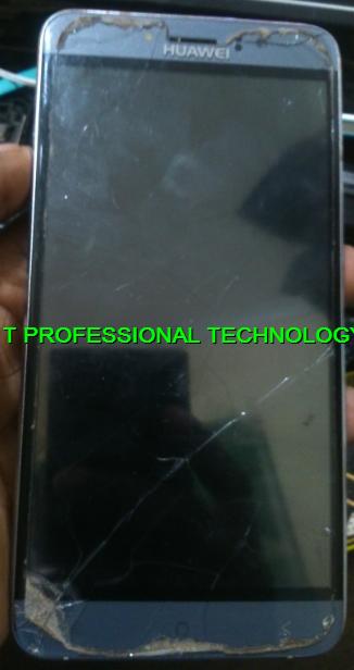 I T PROFESSIONAL TECHNOLOGY