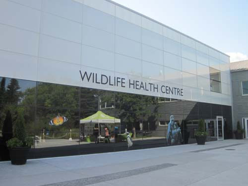 Wildlife Health Centre (Outside)