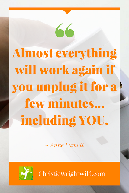 """Almost everything will work again if you unplug it for a few minutes... including YOU."" - Anne Lamott 