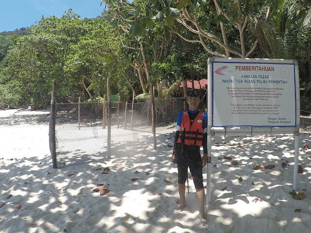 Pantai Tiga Ruang Pulau Perhentian Besar, Perhentian Turtle Project