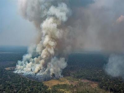حريق الأمازون, مصر, الأرصاد الجوية,