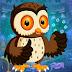 Games4King - Night Owl Rescue Escape