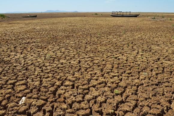 Nordeste já conta com monitoramento piloto para as secas