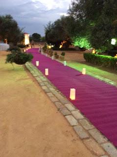 alfombra larga para bodas en sevilla