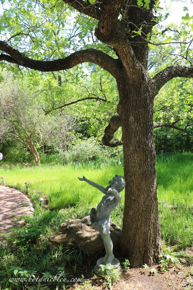 Backyard meadow under oak tree with girl statue