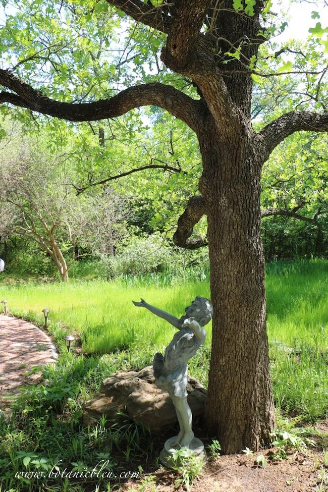 Backyard meadow under oak tree with girl statue