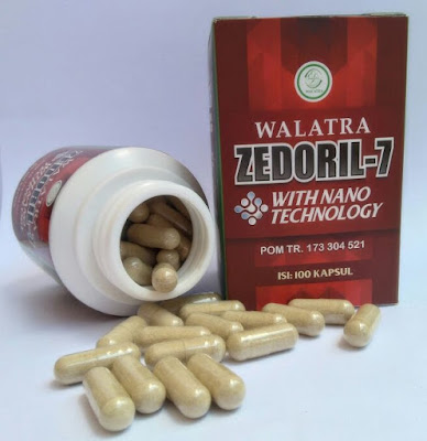 Obat Herbal Paling Ampuh Untuk Atasi Masalah Kanker