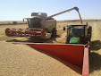 Harvesting barley 2013 with Claas Lexion
