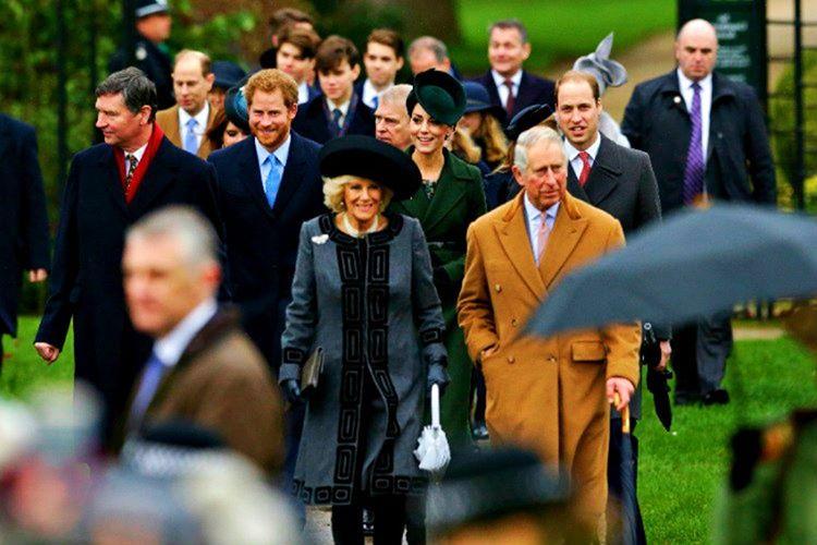 Kraliyet ailesi fertlerinin herhangi bir siyasi oluşumda yer almaları kanunen engellenmiştir.