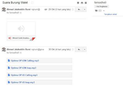Kirim Suara Burung Walet Via Email