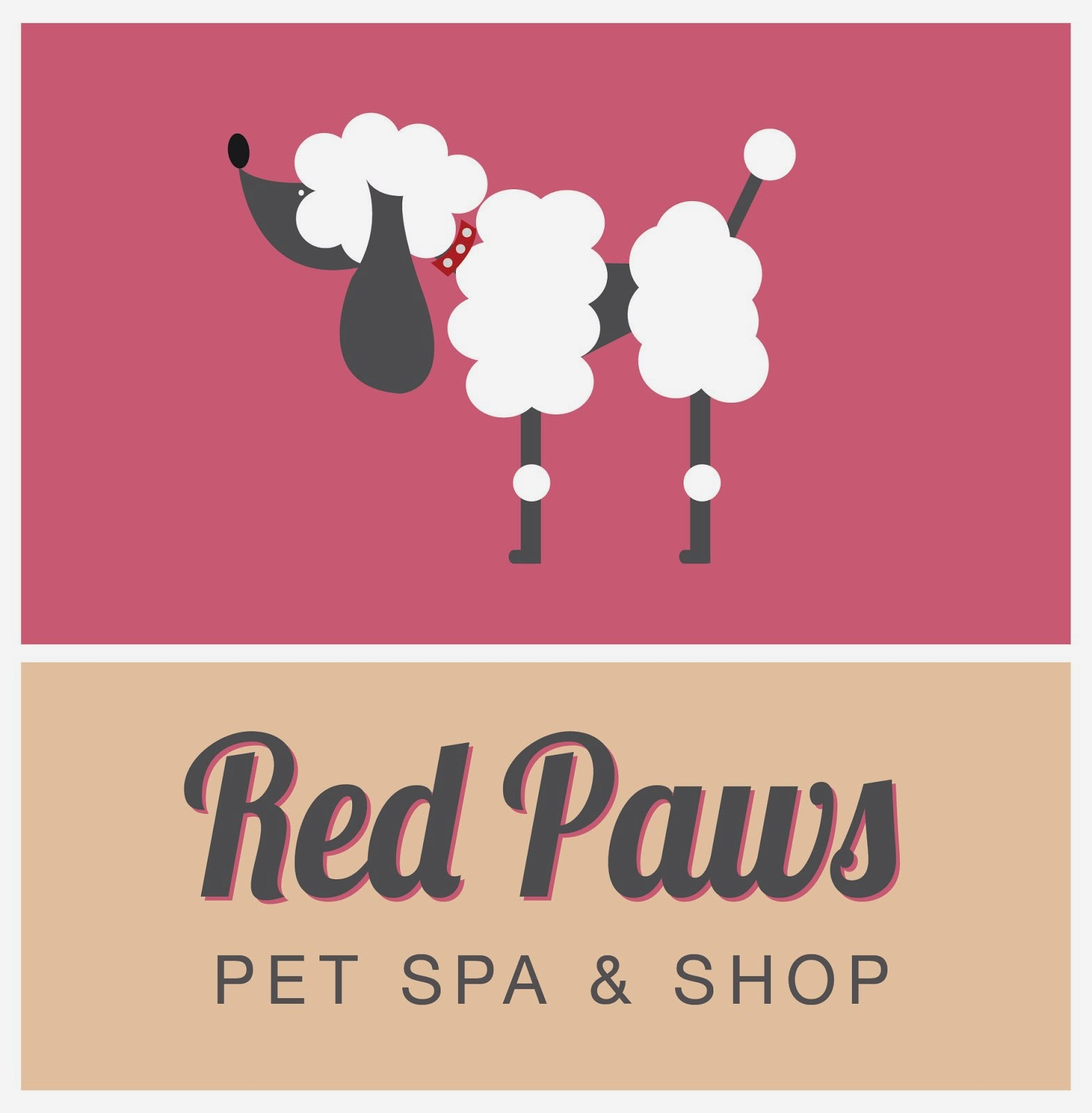Dogs 101 shaving your short haired dog please don 39 t do for A cut above pet salon