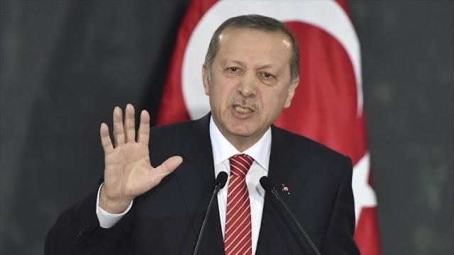 Erdogan: Maldita sea resolución siria de Consejo de Seguridad