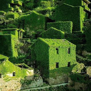Houtouwan- opuszczona wioska w Chinach, którą pokochali turyści!