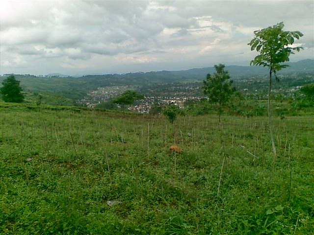 Foto%25285335%2529 Jual Tanah Di Puncak 2, Murah Jual tanah di cipanas jual tanah di puncak jual tanah di puncak2