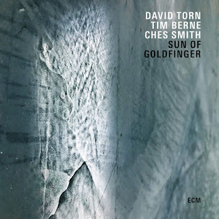 David Torn, Tim Berne & Ches Smith - Sun of Goldfinger [iTunes Plus AAC M4A]