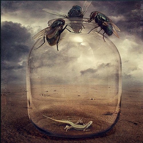 07-Surreal-Photo-Manipulation-Sarolta-Bán-www-designstack-co