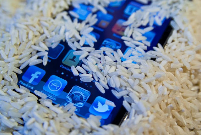 Rice can actually save your wet phone