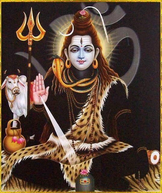 shiv image
