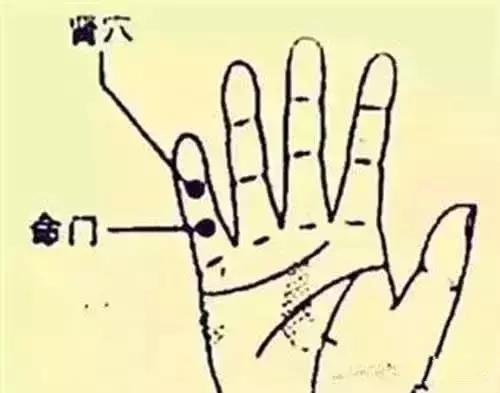 按摩小指,每天堅持50下,身康體健!(抗癌、調養心臟)