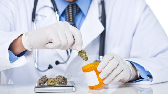 Online platforms help patients and professionals understand cannabis