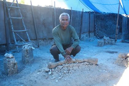 Kisah penemuan fosil gajah purba berusia 1,2 juta tahun di Banjarejo