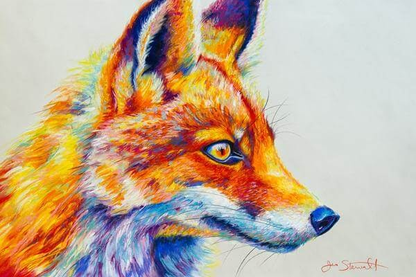13-Red-Fox-Large-Scale-Soft-Pastel-Drawings-Of-Wild-Ainimals-www-designstack-co